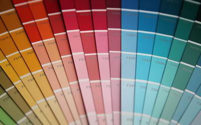 Color Consultant MI